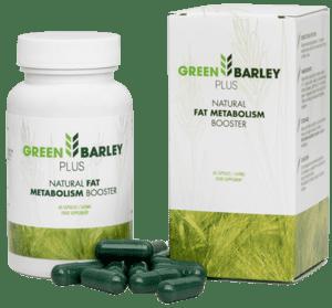 Green Barley Plus Qu'est-ce que c'est?